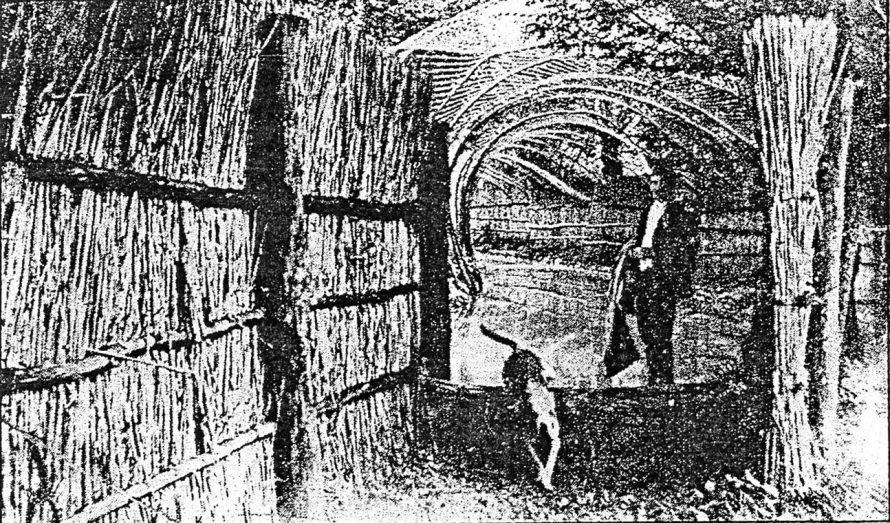 5. kép. Bejárat a kacsafogó csatornájába. (Vlad. Grigar: Kačenáreň v Kopčanoch. Záhorie, roč. IV, 1995, č 1.)